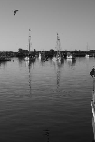 lagos 2010 045